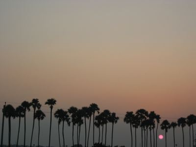 andhra sunset