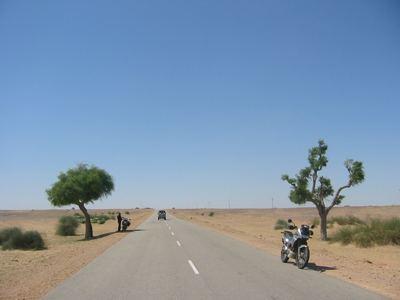 seeking shelter, Thar desert