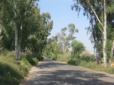 entering Punjab
