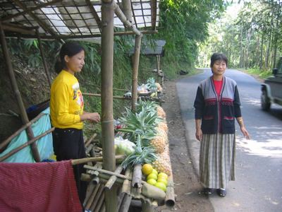 pineapple vendors