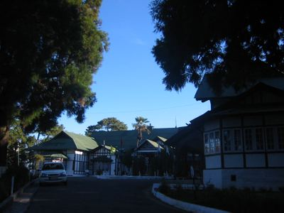 pine wood hotel